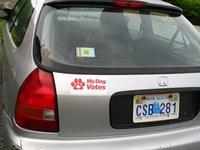 Mdv_sticker_on_car