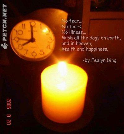 Shanghai_vigil_poem_1
